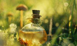 Маски с маслом чайного дерева: эффективная борьба с воспалениями